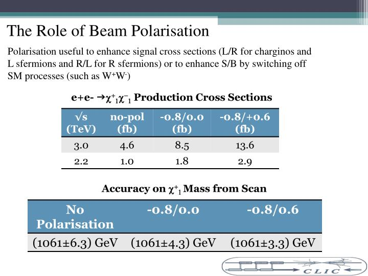 The Role of Beam Polarisation