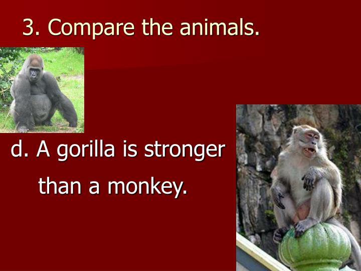 3. Compare the animals.