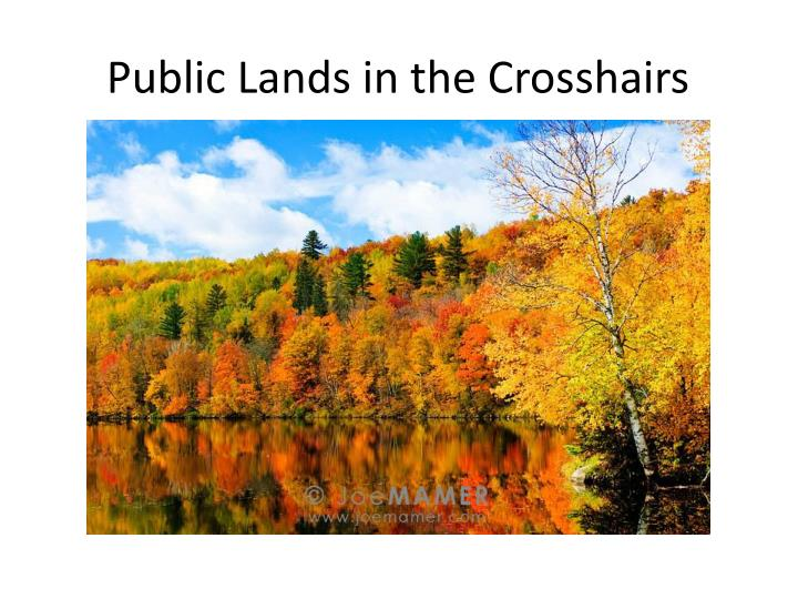 public lands in the crosshairs n.