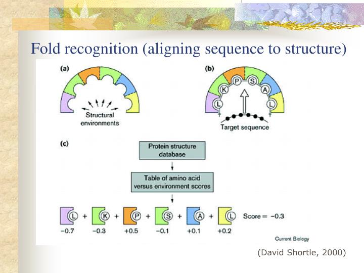 Fold recognition (aligning sequence to structure)