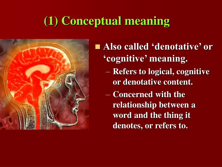 (1) Conceptual meaning