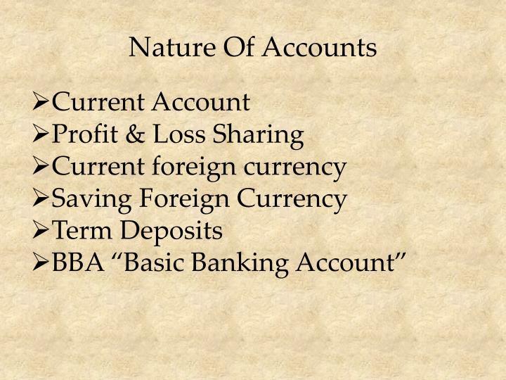 Nature Of Accounts