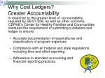 why cost ledgers greater accountability