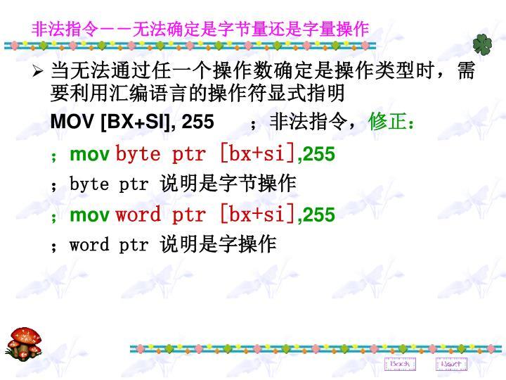 非法指令--无法确定是字节量还是字量操作