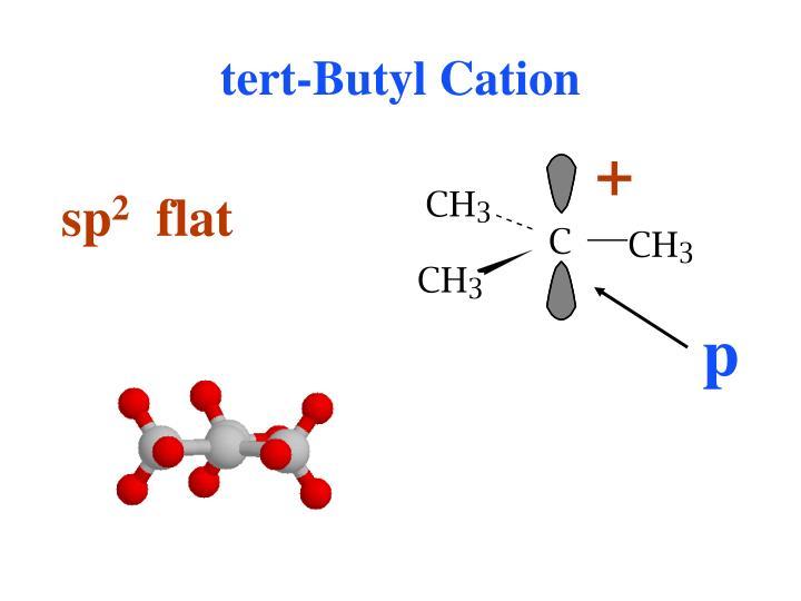 tert-Butyl Cation