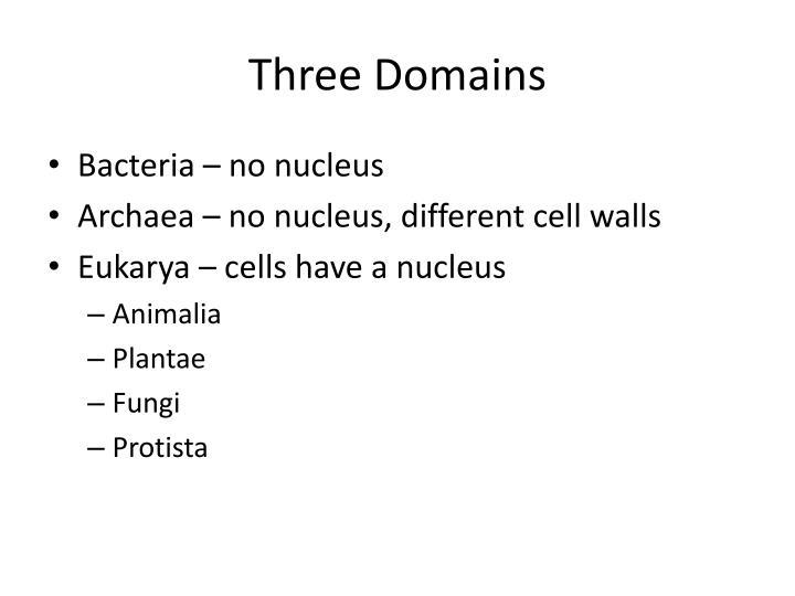 Three Domains