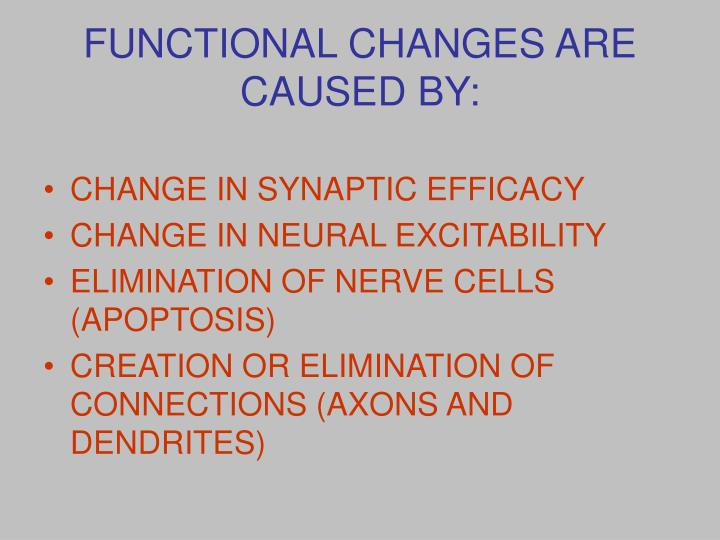 FUNCTIONAL CHANGES ARE CAUSED BY: