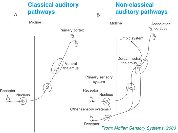 Classical auditory
