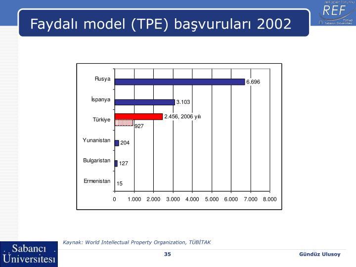 Faydalı model (TPE) başvuruları 2002