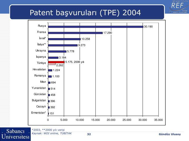 Patent başvuruları (TPE) 2004
