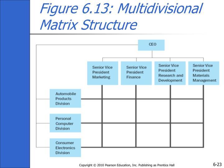 Figure 6.13: Multidivisional Matrix Structure