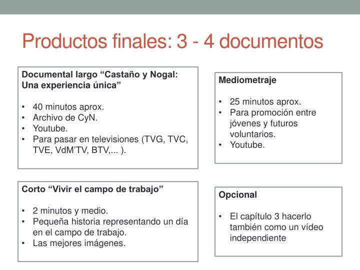 Productos finales: 3 - 4 documentos