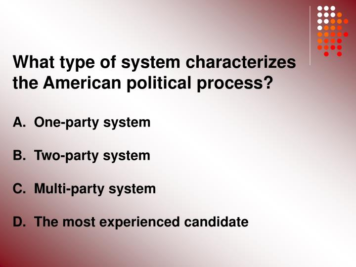 What type of system characterizes the American political process?