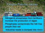 yangtze pollution causes