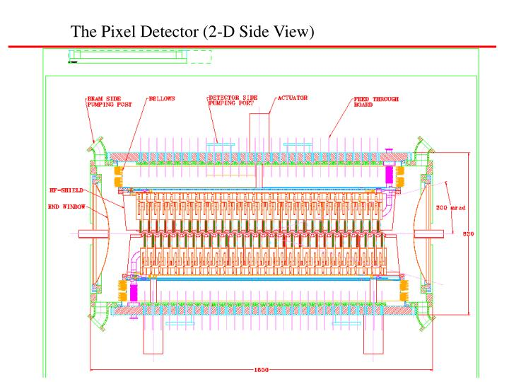The Pixel Detector (2-D Side View)