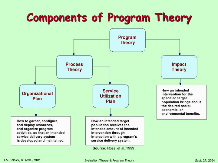 Components of Program Theory