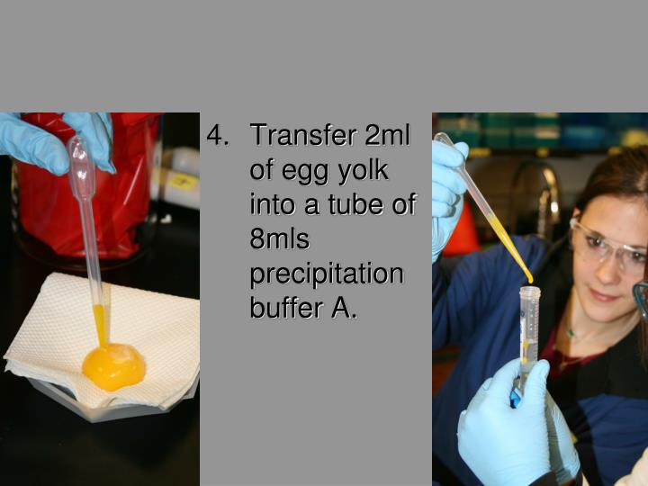 Transfer 2ml of egg yolk into a tube of 8mls precipitation buffer A.
