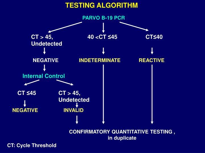 TESTING ALGORITHM
