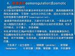 4 osmoregulation osmotic adjustment