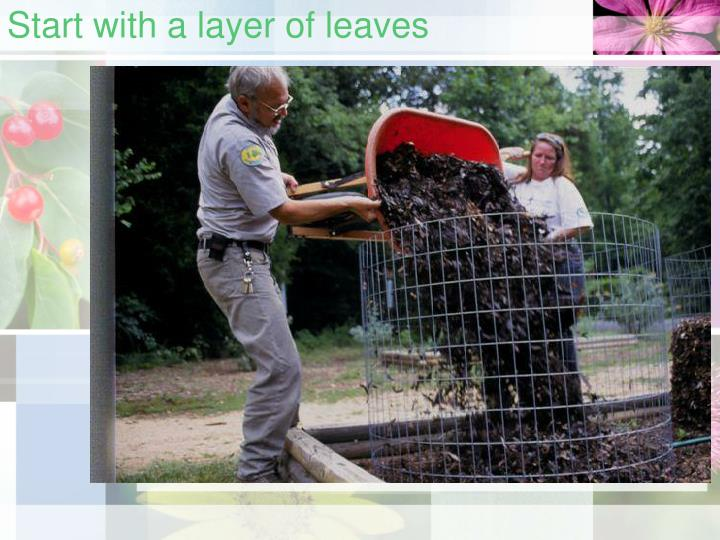 Start with a layer of leaves