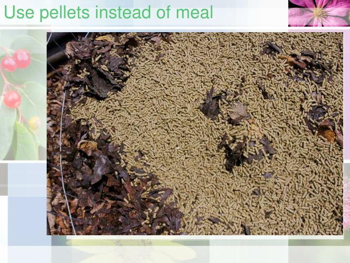 Use pellets instead of meal