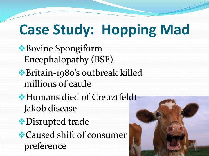 Case Study:  Hopping Mad
