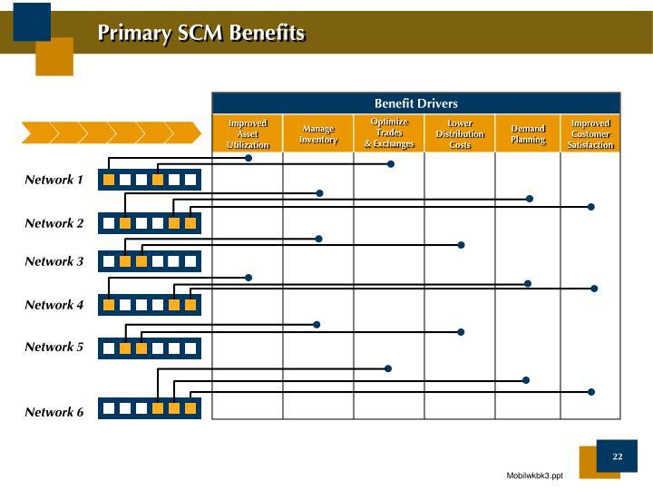 Primary SCM Benefits