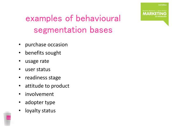 behavioral segmentation examples