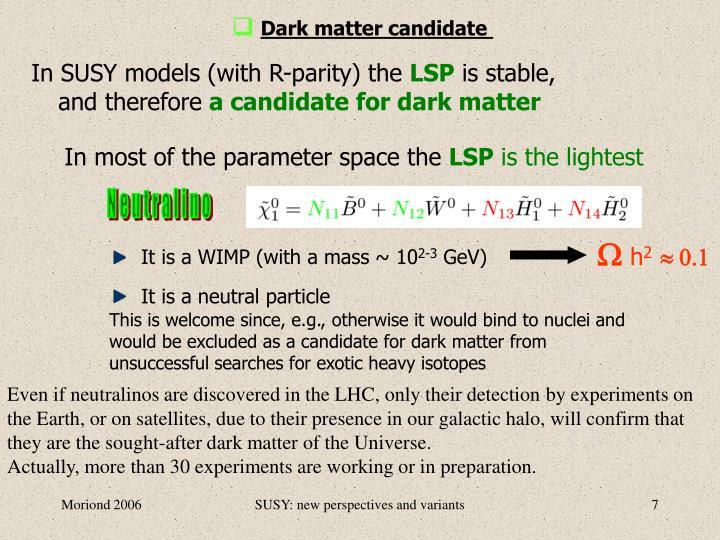 Dark matter candidate