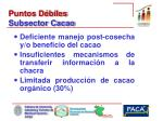 puntos d biles subsector cacao