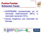 puntos fuertes subsector cacao