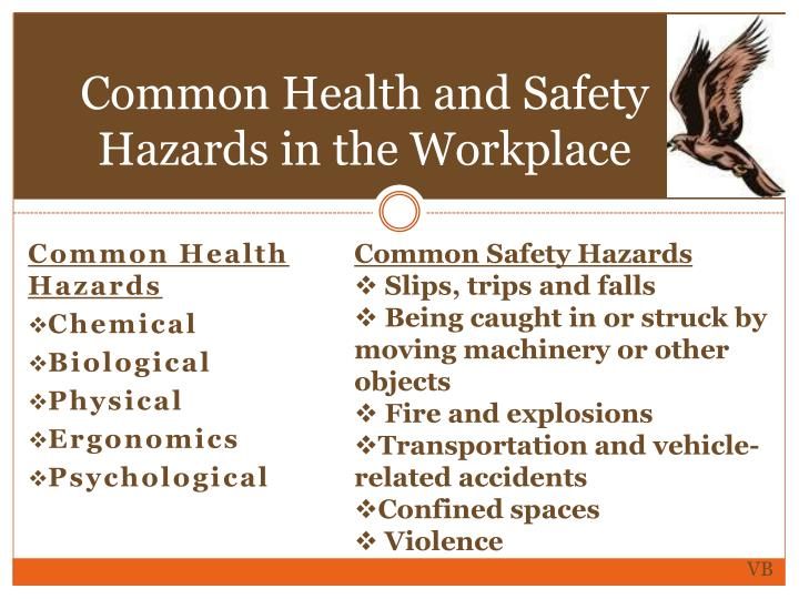 Common Health and Safety Hazards in the Workplace