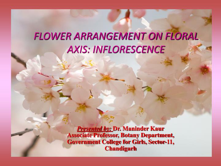 flower arrangement on floral axis inflorescence n.