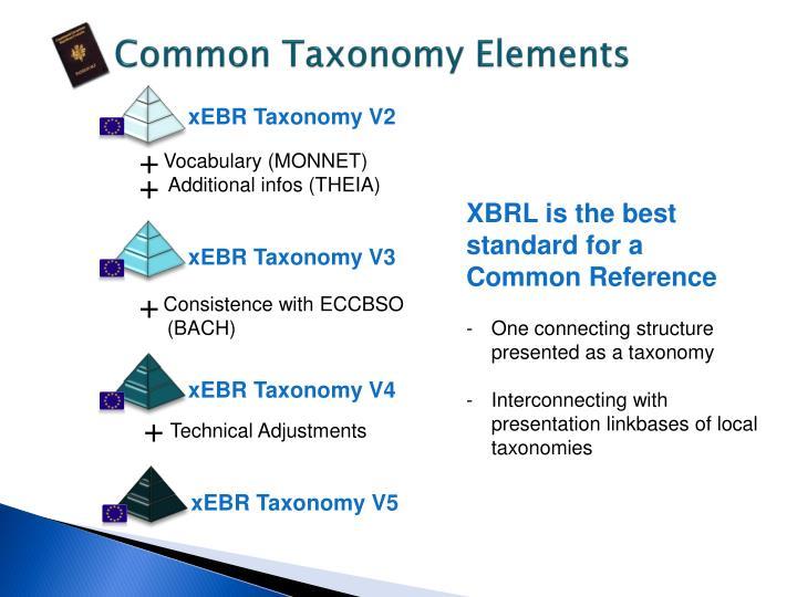 Common Taxonomy Elements