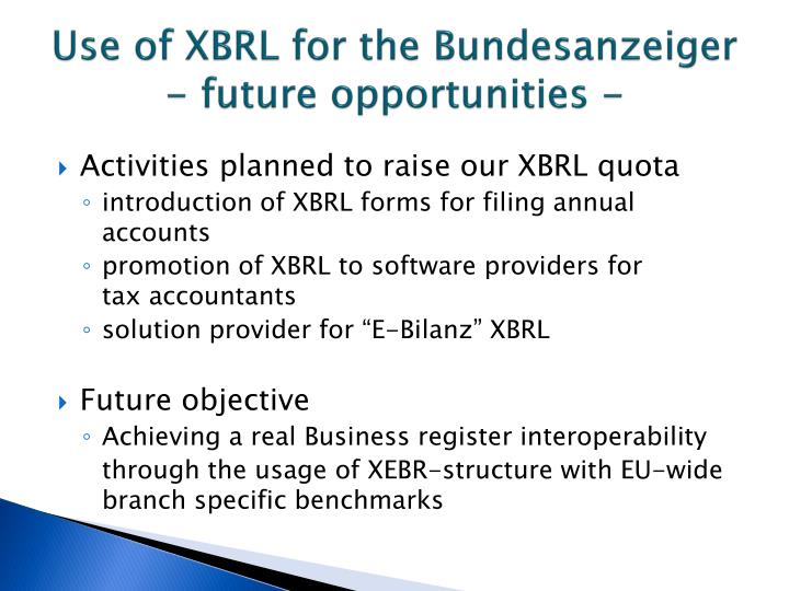 Use of XBRL for the Bundesanzeiger