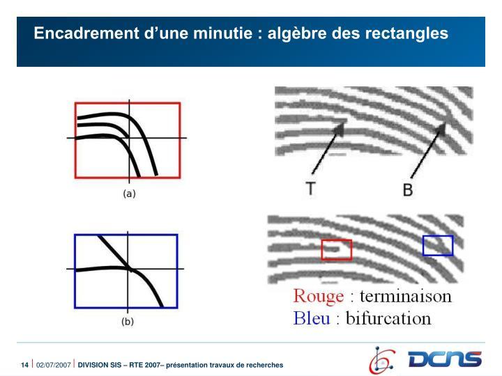 Encadrement d'une minutie : algèbre des rectangles