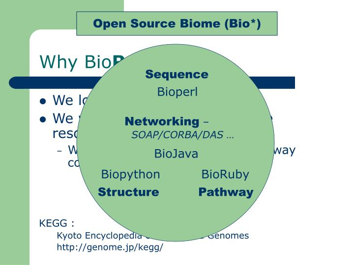 Bioinformatics subjects
