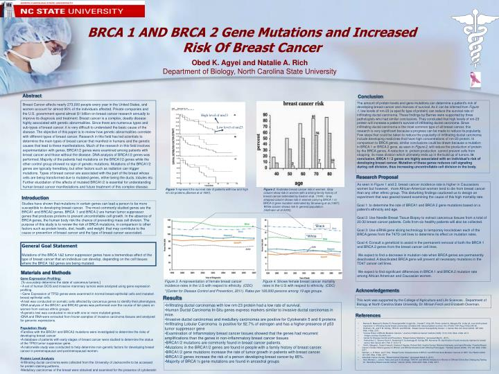 BRCA 1 AND BRCA 2 Gene Mutations and Increased   Risk Of Breast Cancer