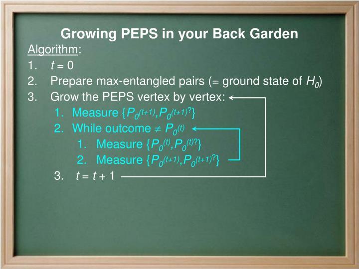 Growing PEPS in your Back Garden