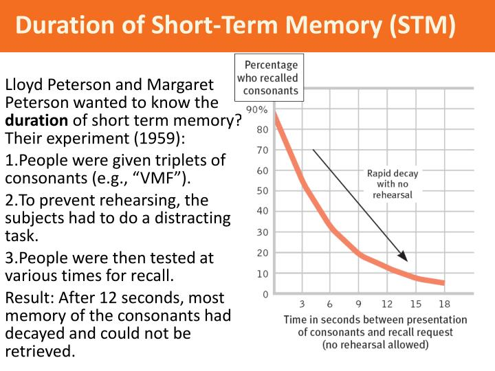 capacity duration of short term memory Short-term memory (stm) is the second stage of the multi-store memory model proposed by the atkinson-shiffrin the duration of stm seems to be between 15 and 30 seconds, and the capacity about 7 items.