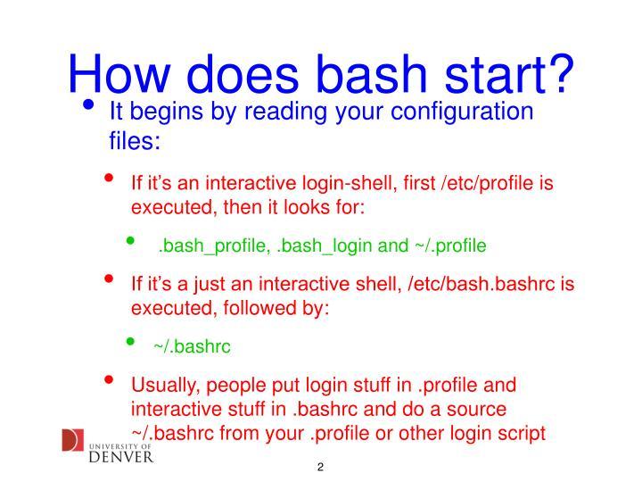 How does bash start
