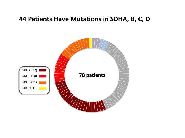 44 Patients Have Mutations in SDHA, B, C, D