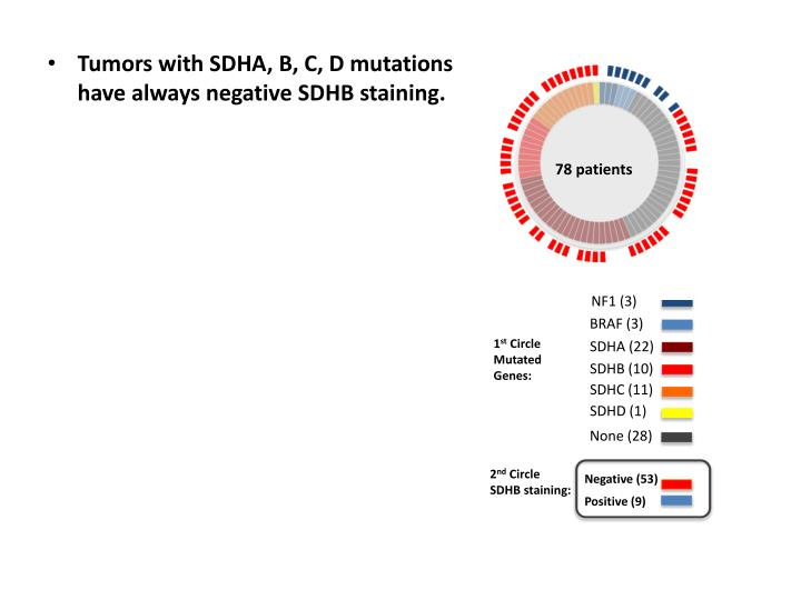 Tumors with SDHA, B, C, D mutations have always negative SDHB staining.