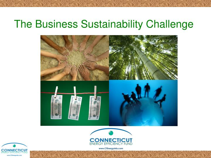 the business sustainability challenge n.