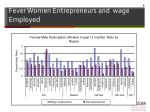 fever women entrepreneurs and wage employed
