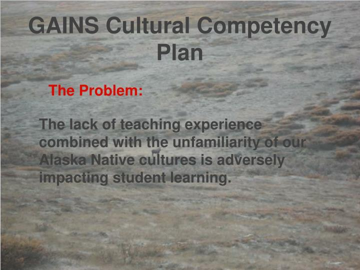 GAINS Cultural Competency Plan