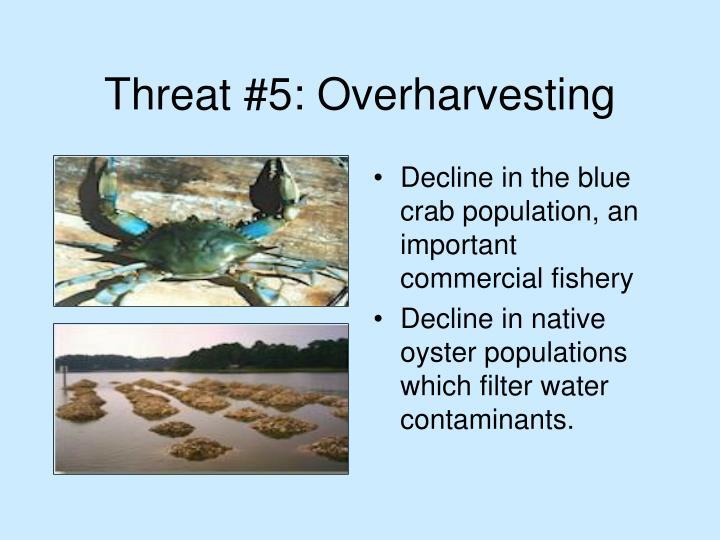 Threat #5: Overharvesting