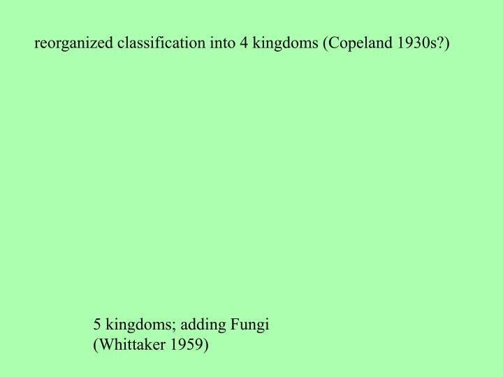 reorganized classification into 4 kingdoms (Copeland 1930s?)