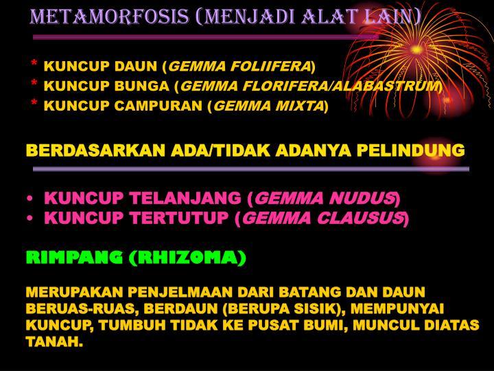 METAMORFOSIS (MENJADI ALAT LAIN)
