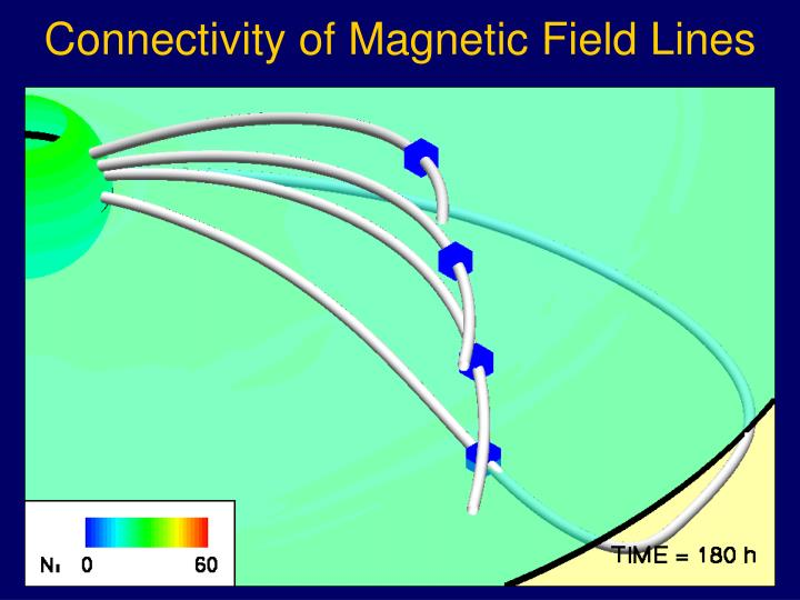 Connectivity of Magnetic Field Lines